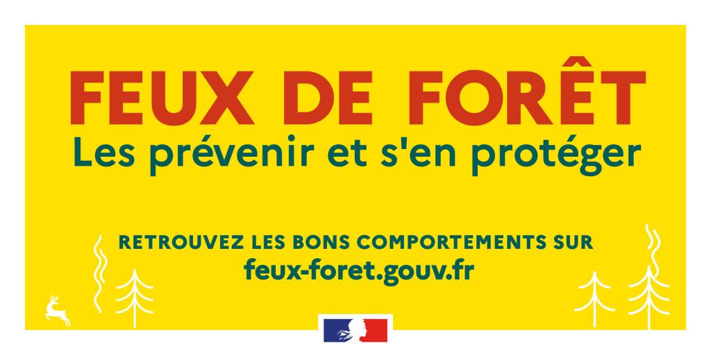 19062-feuForet_TW 1024x512-1